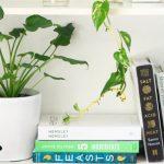 mobilier écologique bio