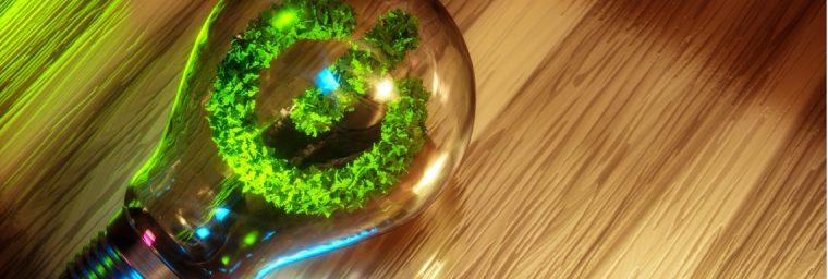 meilleur fournisseur electricite verte